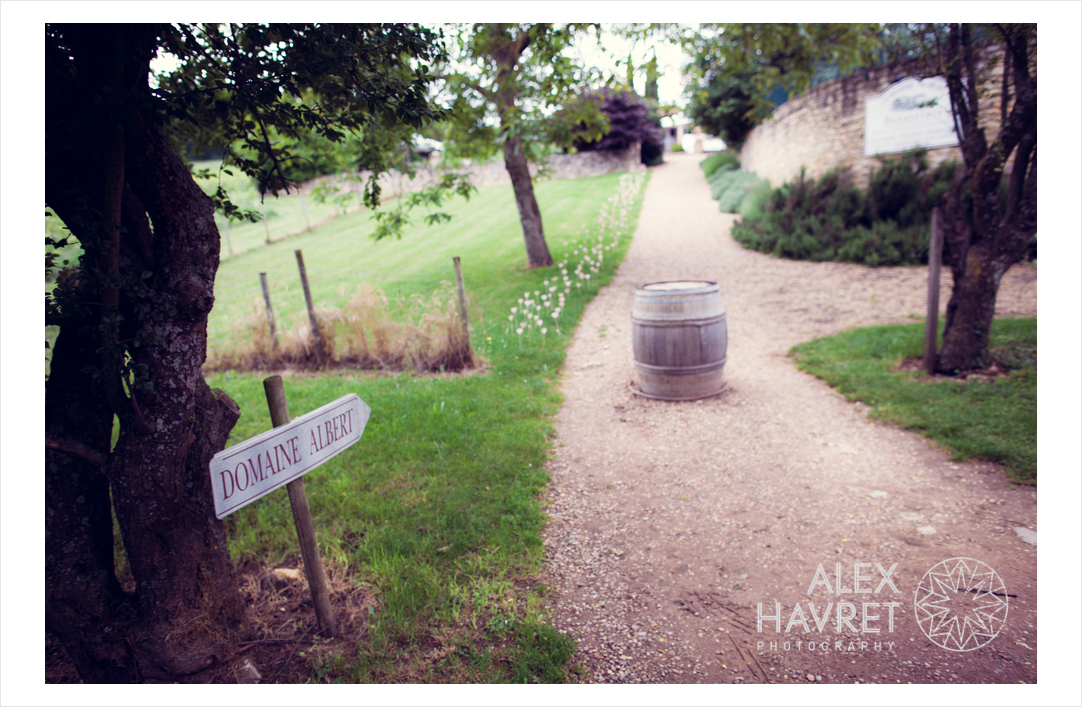 alexhreportages-alex_havret_photography-photographe-mariage-lyon-london-france-LF457-cocktail-4438